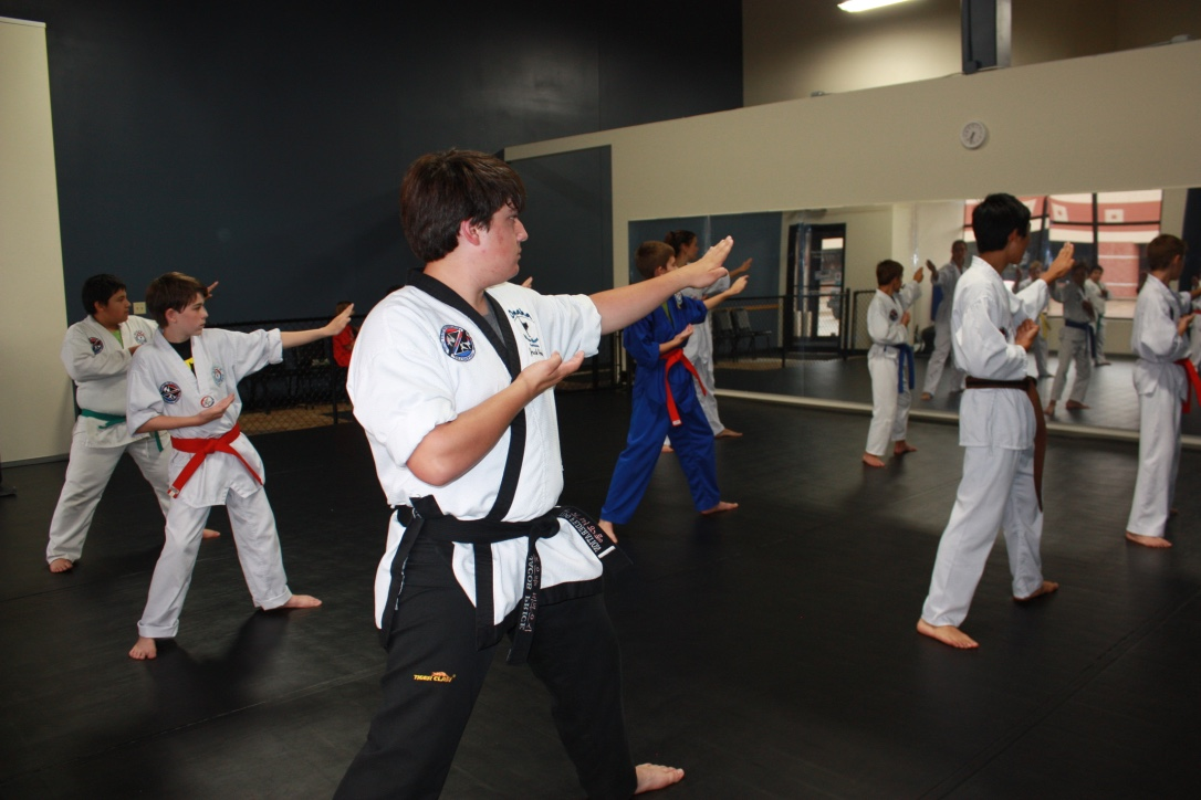 Teens and Adult - TaeKwonDo - Omaha Blue Waves Martial Arts